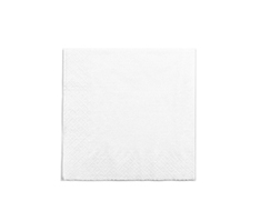 Recycled Napkins 33cm 2-Ply WHITE (Pack of 100)